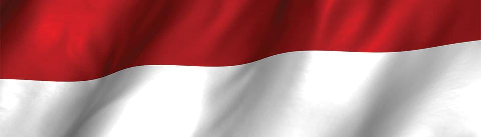 vize za indoneziju