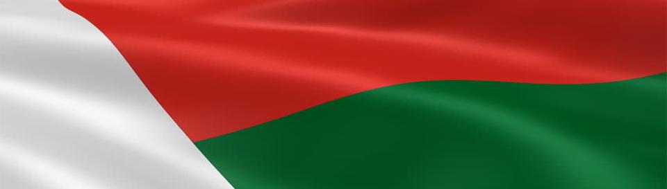 Vize za Madagaskar