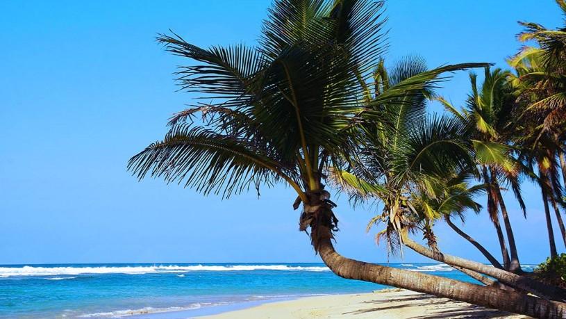 Dominikanska Republika - Punta Cana