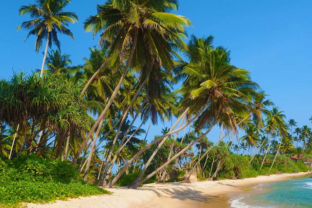 Šri Lanka - tura i odmor na plaži