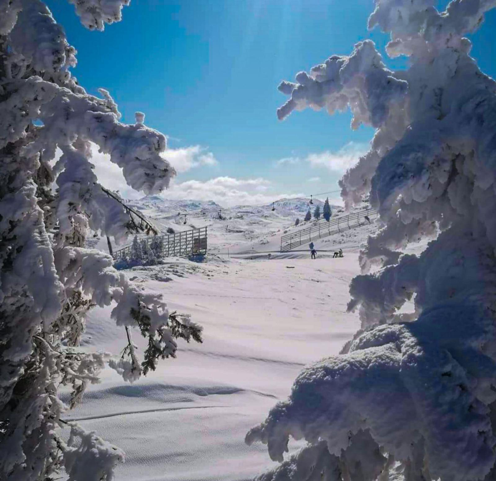 Jahorina - olimpijska planina