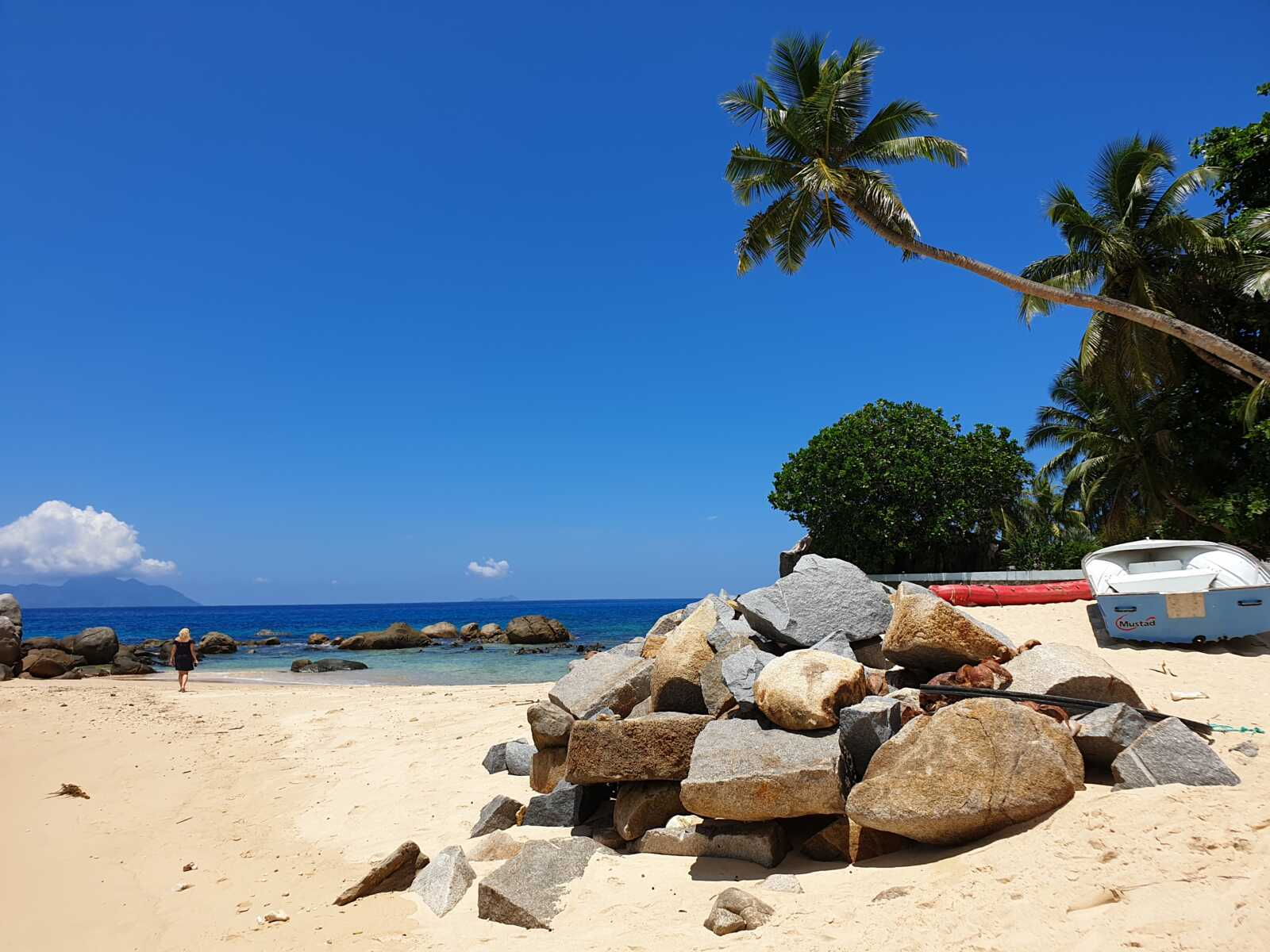 Sejšeli, plaža, palma, putovanja
