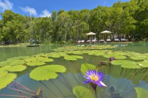 Dreamland Maldivi-Jumbo Travel-lake